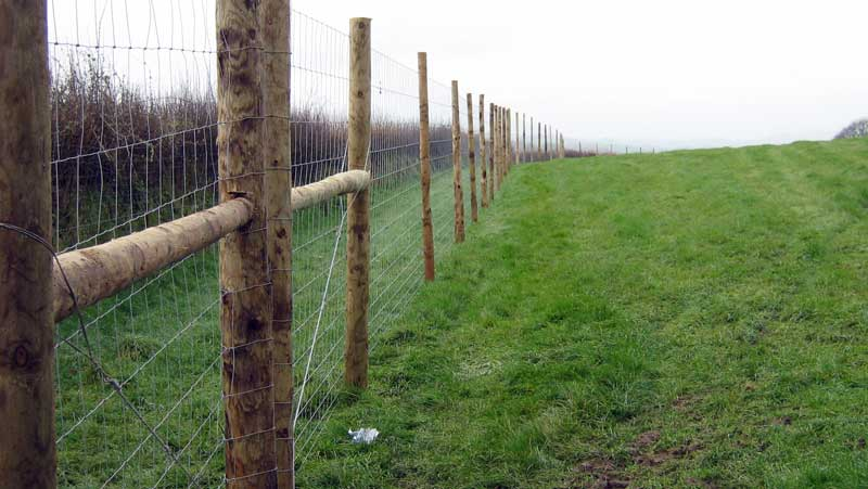 Deer Fencing Game Fence Livestock Fences Deer Netting