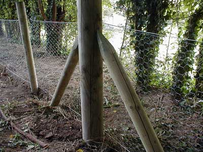 RABBIT EXCLUSION | ELECTRIC FENCING FOR RABBITS | EFD