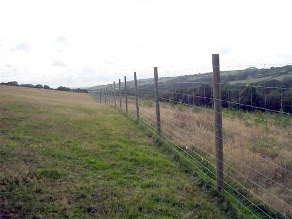 Deer Fencing Deer Fence Options Deer Fence