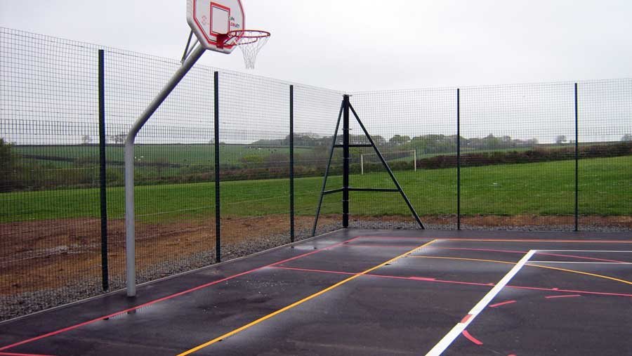 WIRE MESH BASKETBALL / NETBALL SPORTS ENCLOSURE